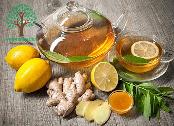 trà gừng, mật ong, chanh
